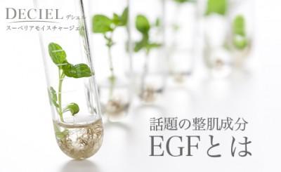 EGF上皮細胞増殖因子とは